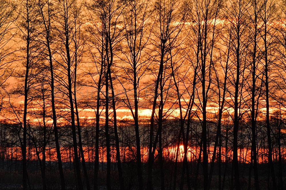 Sonnenuntergang auf einem Feld bei Kienitz